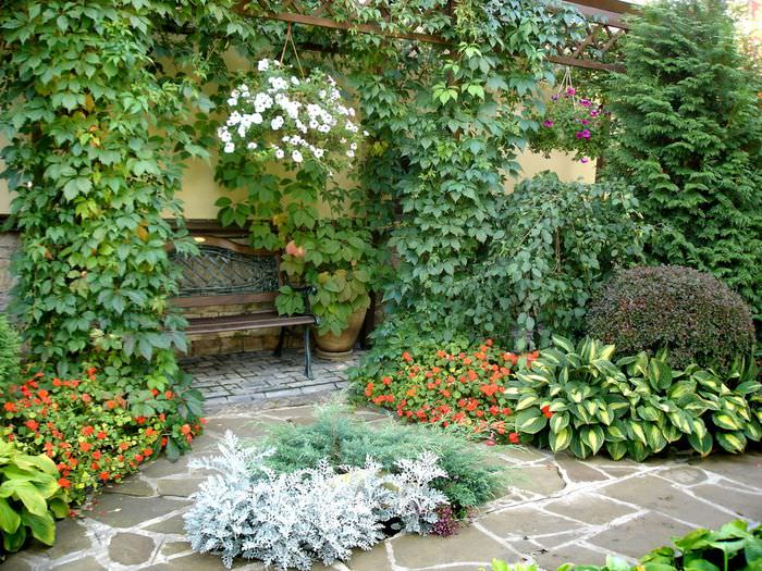 Место отдыха в саду среди обилия растений