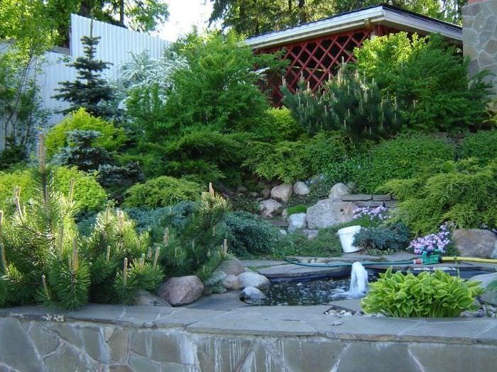 Дизайн загородного сада в альпийском стиле