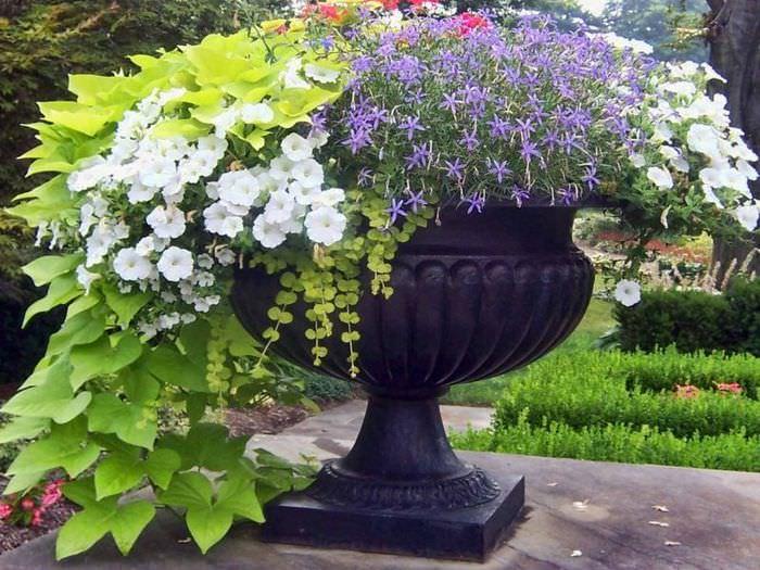 Вазон с цветами в ландшафтном дизайне загородного сада