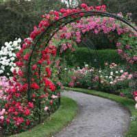 Арка с розами над садовой дорожкой