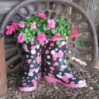 Старые сапожки в роли новых цветочных горшков