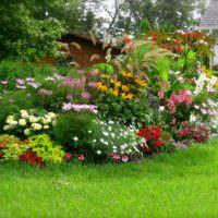 Садовая клумба с многолетними растениями