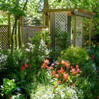 Пергола и деревянный забор на маленьком участке