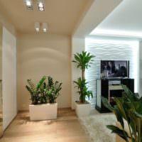 Живые растения в дизайне однокомнатной квартиры