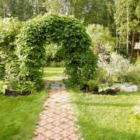 Увитая вьюнами садовая арка над дорожкой из тротуарной плитки