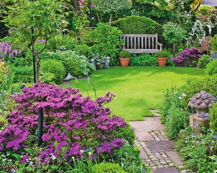 Небольшая лужайка дачного садика с фиолетовыми кустиками