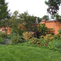 Композиция из хвойных и лиственных деревьев вдоль кирпичного забора