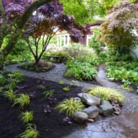 Теневой участок загородного сада