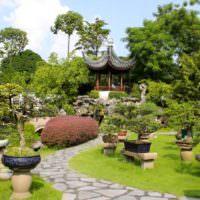 Сад в восточном стиле на дачном участке