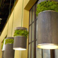 Мох в декорировании подвесных светильников