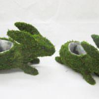 Декоративные зайчики из стабилизированного мха