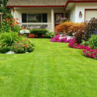 Английский газон в дизайне частного сада
