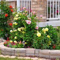 Желтые розы на клумбе частного сада