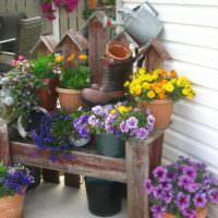 Цветы в горшках в дизайне садового участка