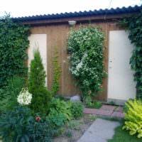 Вертикальное озеленение хозяйственных построек