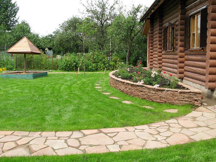 Партерный газон на приусадебном участке