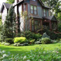 Миксбордер из хвойных растений перед окнами частного дома