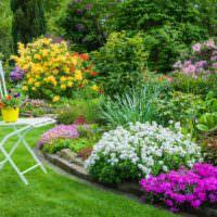 Клумбы с цветами для красивого оформления частного участка