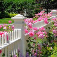 Декор деревянного забора цветущими растениями