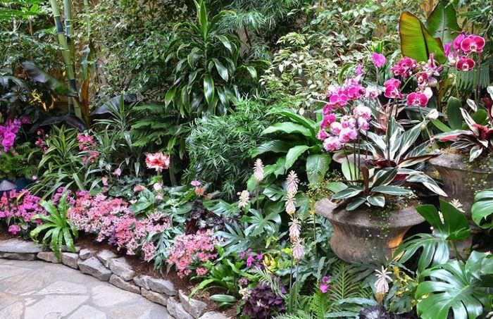 Оформление цветочной клумбы на маленьком участке