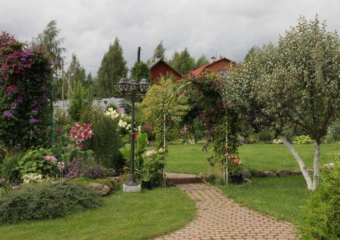 Красивая арка над дорожкой, ведущей в сад
