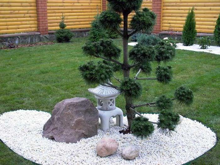 Миниатюрная композиция в стиле японского сада