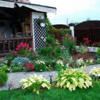 Цветущие растения в дизайне садового участка
