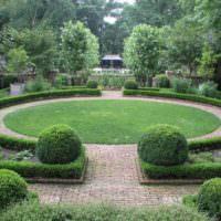 Стриженные кустарники в дизайне европейского сада