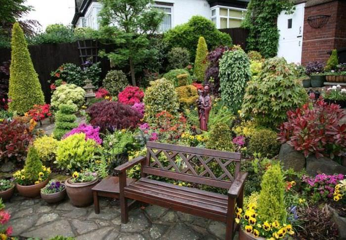 Миксбордер из цветов и многолетних кустарников