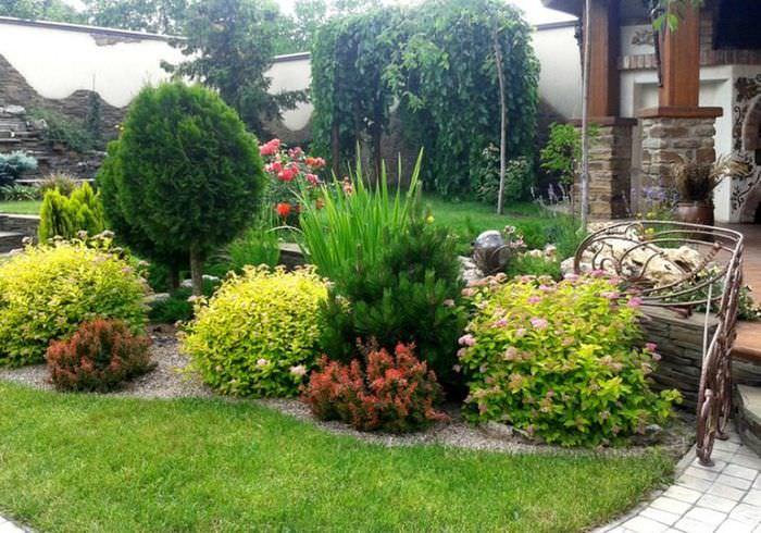 Многолетние кустарники и травянистые растения в ландшафте частного сада