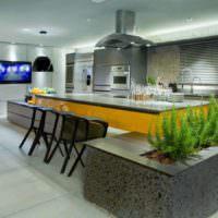 Живые растения в дизайне кухни-гостиной