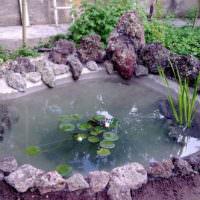 Искусственный водоем с растениями своими руками