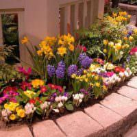 Клумба с многолетними цветами