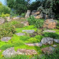 Каменные валуны в ландшафтном дизайне