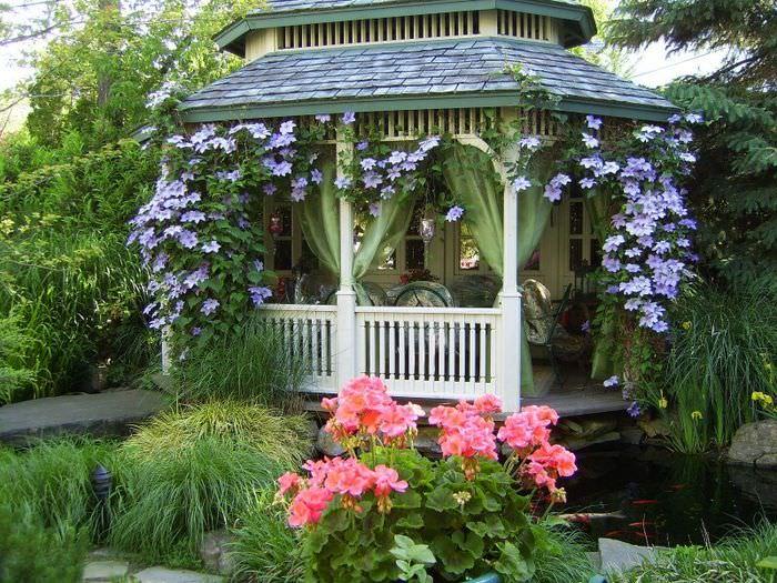 Оформление садовой беседки цветущими растениями