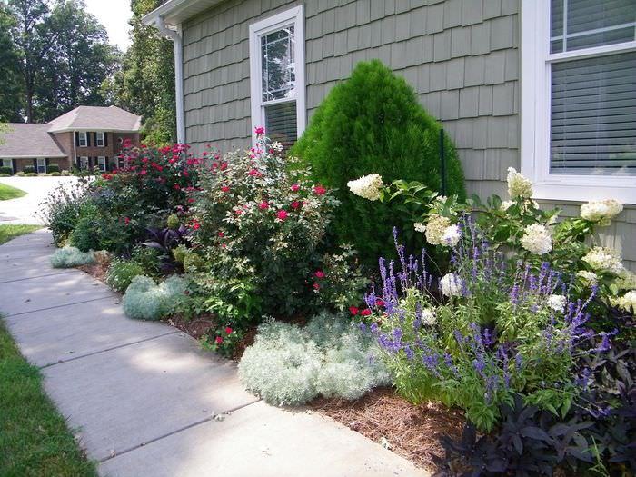 Сочетание растений в ландшафтном дизайне сада