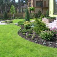 Клумба перед домом с цветами и кустарниками