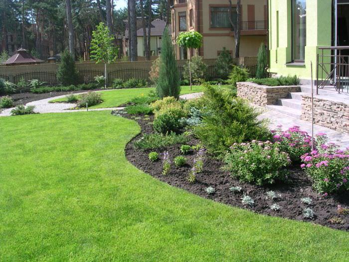 Дизайн цветников и газонов фото диагностику назначать