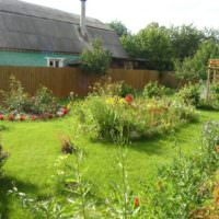 Дикий стиль в оформлении садового участка
