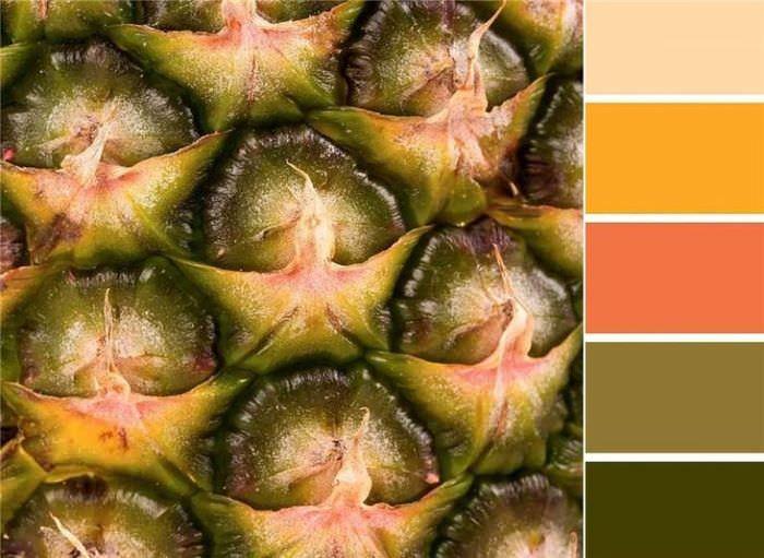 Схема сочетаний оливкового цвета с другими оттенками