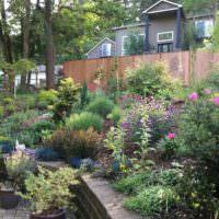 Оформления склона садового участка растениями и цветами