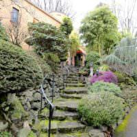 Кустарники вдоль каменной лестницы, ведущей к дому
