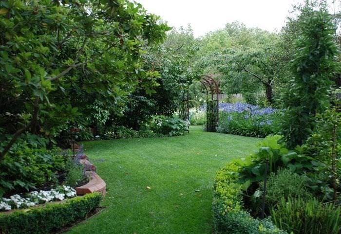 Зеленая лужайка среди садовых деревьев