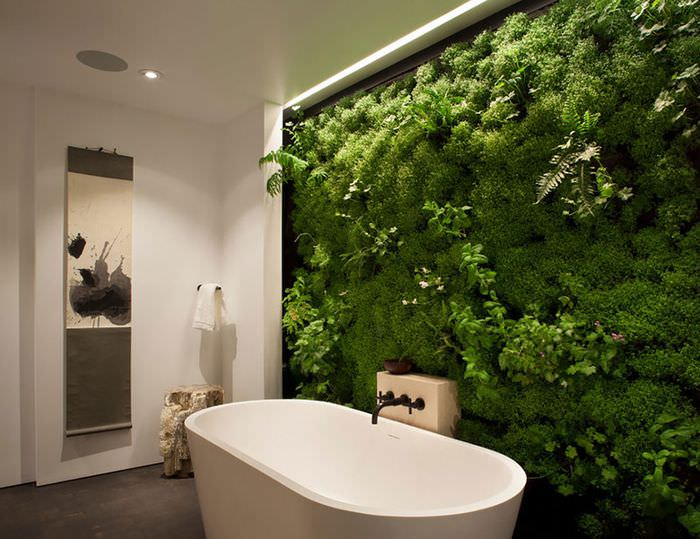 Оформление стены в ванной живыми растениями