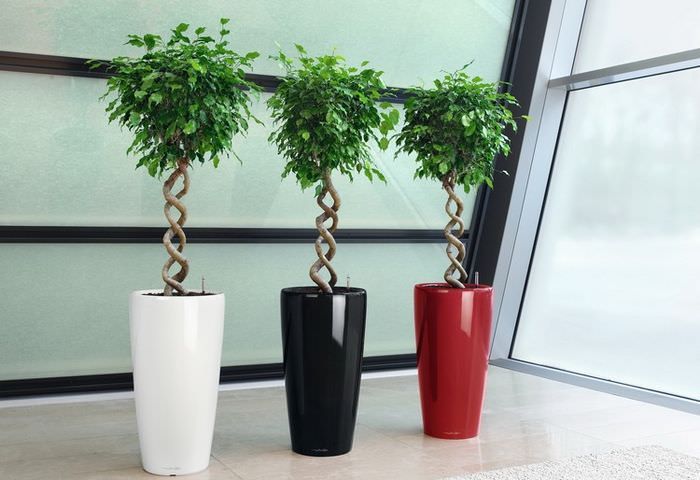 Три вазы, одинаковые по форме, но разные по цвету