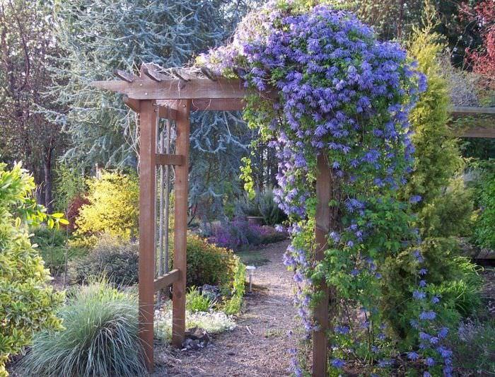 Садовая арка из дерева в ландшафте дачного участка