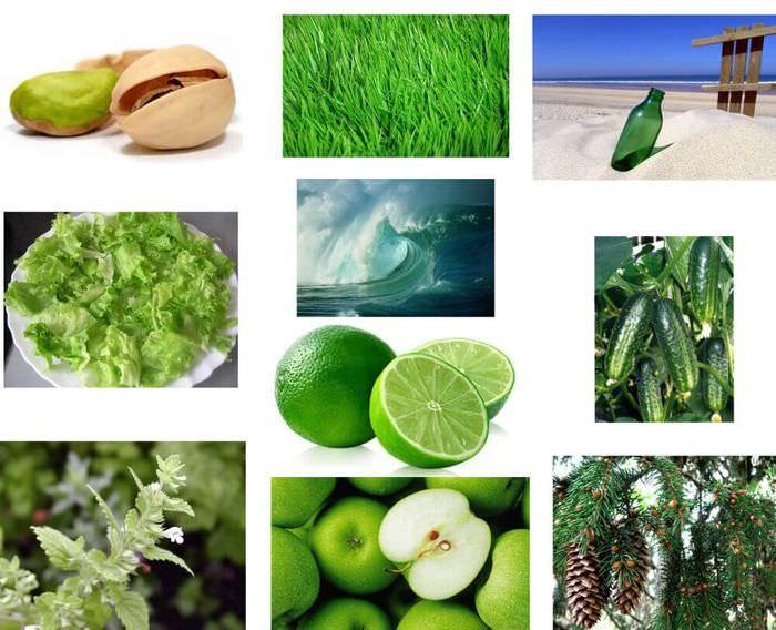 Примеры различных оттенков зеленого цвета