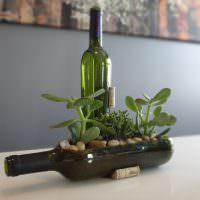 Горшок для комнатных растений из стеклянной бутылки