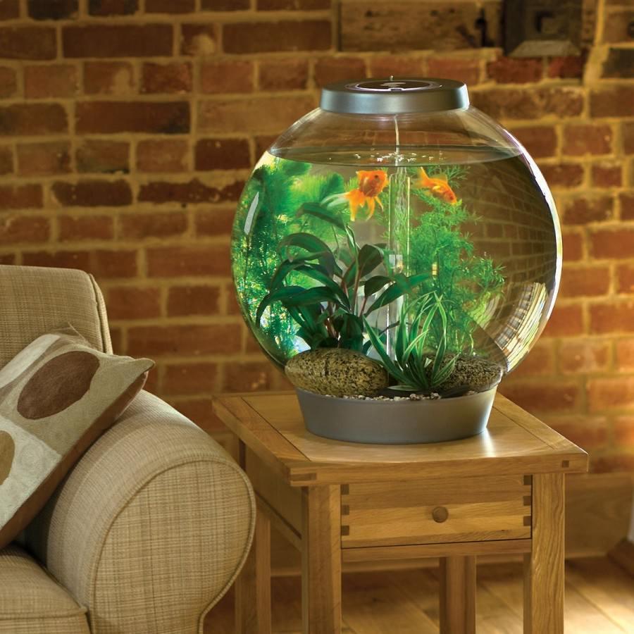 Круглый аквариум в интерьере гостиной