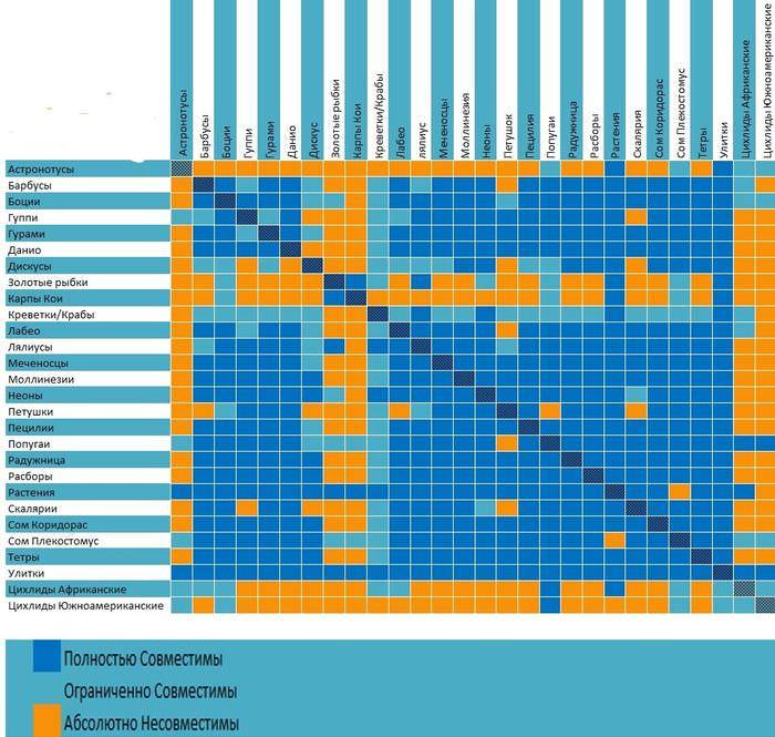 Таблица совместимости некоторых разновидностей рыб для аквариума